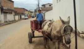 Medina - O garoto e a montaria, Por Darlan M Cunha