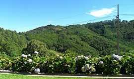 Monte Verde - Monte Verde - MG