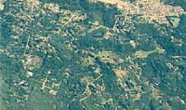 Monte Verde -