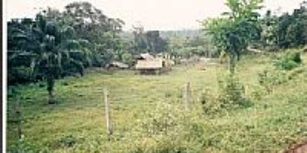 sit�o do tio valdo 1999.  por G�sio