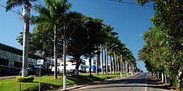 Entrada da cidade - Muzambinho