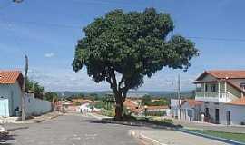 Nova Minda - Imagens da localidade de Nova Minda - MG