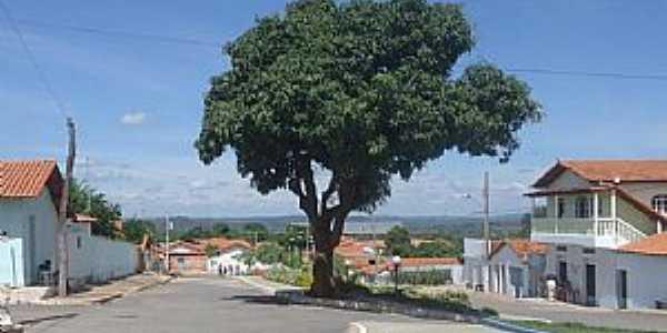Imagens da localidade de Nova Minda - MG