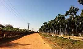 Nova Porteirinha - Nova Porteirinha-MG-Estrada da cidade-Foto:Patrícia Britto