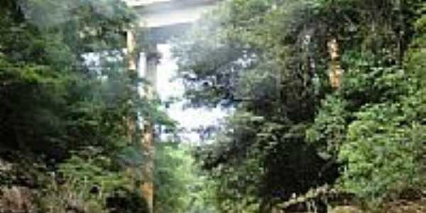 Vista da ponte em Olímpio Campos-Foto:joseborges -