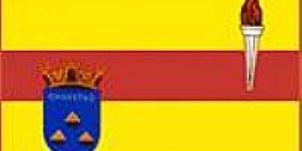 Bandeira Ouro Fino-MG