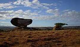 Paciência - Imagem de Paciência-Foto:albertosaurus2003