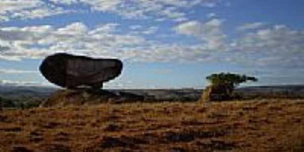 Imagem de Paciência-Foto:albertosaurus2003