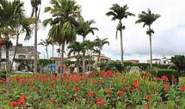 Amargosa - Amargosa-BA-Flores na praça central-Foto:MARCELO S F