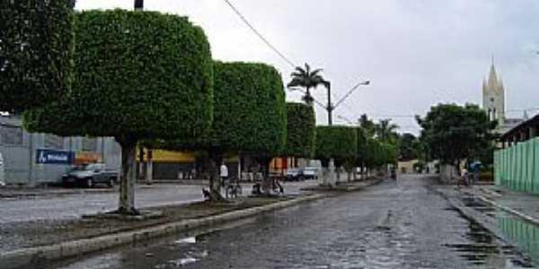 Am�lia Rodrigues-BA-Entrada da cidade-Foto:Otavio Cardoso