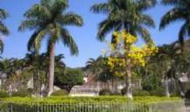 Paiva - Foto da Pra�a Central Proximo � Prefeitura com um Ip� amarelo e Palmeiras, Por ANTONIO JOSE DE PAIVA MELO