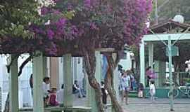 Palma - Palma - MG