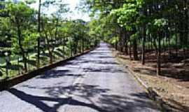 Passa Quatro - Estrada do IBAMA em Passa Quatro-Foto:JBRMONTEIRO
