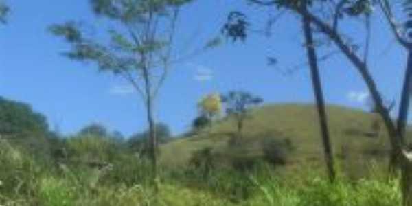 Ipê Amarelo, Por Lourdes
