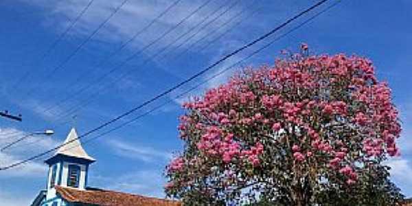 Paula Cândido -  mg Zona da Mata  Igreja do Rosário  Fotografia de Taynã Pães