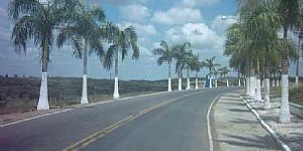 Antônio Cardoso-BA-Avenida na entrada da cidade-Foto:Nivas Larsan