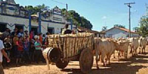 Carro de boi em Poções-Foto:Wilson Fortunato