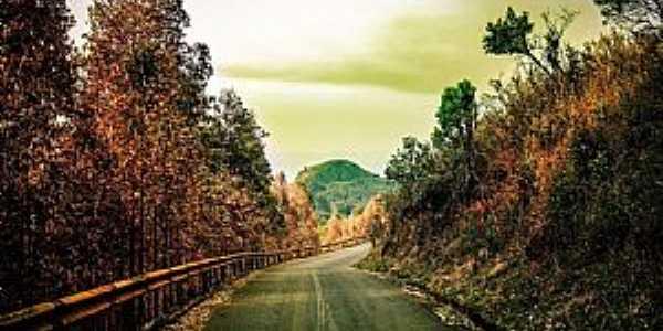 Estrada de acesso ao Cristo