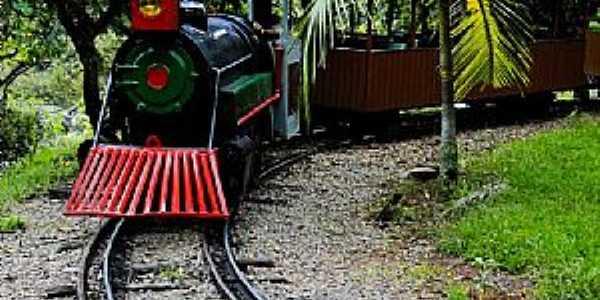 Poços de Caldas-MG-Turismo Ferroviário-Foto:Adriano Martins