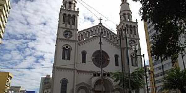 Pouso Alegre-MG-Catedral Metropolitana do Bom Jesus-Foto:vichv