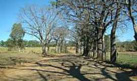 Prudente de Morais - Prudente de Morais-MG-Estrada em área rural-Foto:Jairo Nunes Ferreira