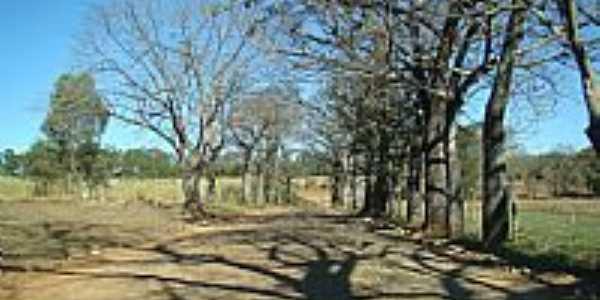 Prudente de Morais-MG-Estrada em área rural-Foto:Jairo Nunes Ferreira