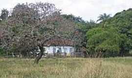 Quartel de São João - Casa na área rural em Quartel de São João-Foto:trekearth.