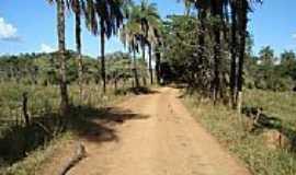 Quartel Geral - Estrada na área rural de Quartel Geral-Foto:luizalvessg