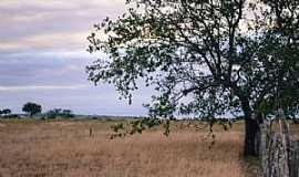 Araci - Araci-BA-Área rural-Foto:DaniloVictor