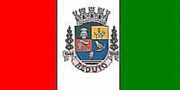 Bandeira de Reduto-MG