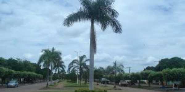 PRAÇA NA AVENIDA CENTRAL DE RIACHINHO, Por MANU