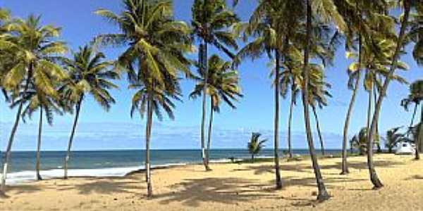 Arembepe-PA-Linda praia de Arembepe-Foto:Lelia Dourado