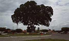 Argoim - Argoim-BA-Praça Principal-Foto:ecfigueiredo