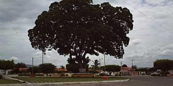 Argoim-BA-Praça Principal-Foto:ecfigueiredo