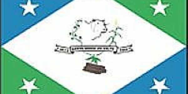 Bandeira de Santa Maria do Salto - MG