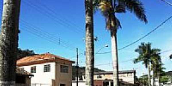 Avenida em Santa Rita de Ouro Preto-Foto:souexcel