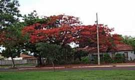 Santa Vitória - Santa Vitória-MG-Avenida Brasil com Rio Grande do Sul-Foto:Espirito_dePorco_SV