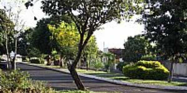 Santa Vitória-MG-Avenida Reinaldo Franco-Foto:Espirito_dePorco_SV