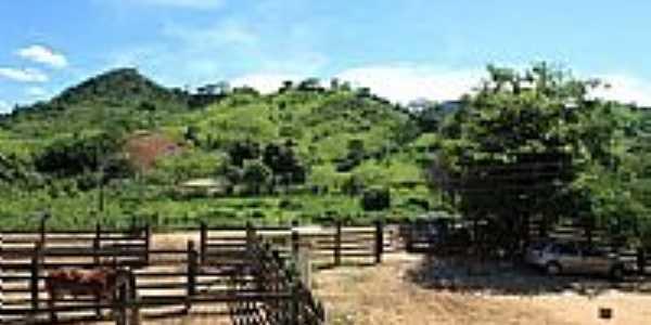 Fazenda Sossego em Santo Antônio da Fortaleza-Foto:Gilson de Souza