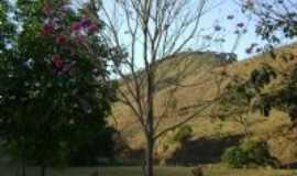 Santo Antônio do Grama - Vista da Paisagem Rural - Ipê Rosa - Fazenda Vitória - Sto Antônio do Grama, Por Matheus O. Dutra Miranda