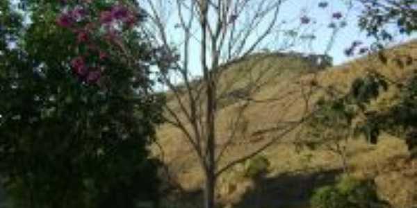 Vista da Paisagem Rural - Ipê Rosa - Fazenda Vitória - Sto Antônio do Grama, Por Matheus O. Dutra Miranda