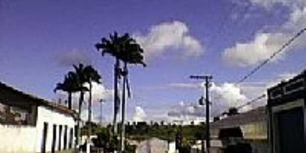 distrito de Baixa do Palmeira, município de Sapeaçu