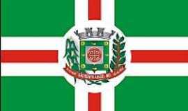 S�o Bento Abade - Bandeira de S�o Bento  Abade-MG