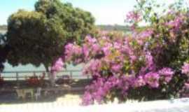São Francisco - Beira do cais, Por Gilson Oliva (timba)