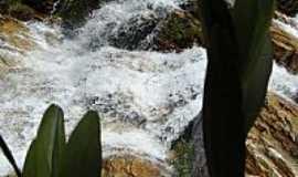 São João Batista do Glória - São João Batista do Glória-MG-Orquídea Rupícola e a Cachoeira-Foto:gmarcusso