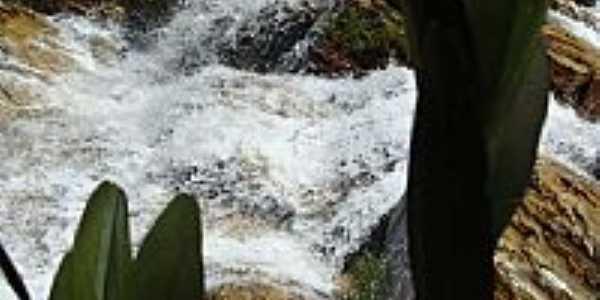 São João Batista do Glória-MG-Orquídea Rupícola e a Cachoeira-Foto:gmarcusso