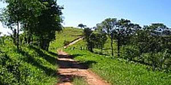 Estrada do Rolador
