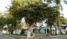 São José do Pântano - Praça, Por Caio Jefferson