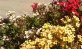 São José dos Salgados - Jardins floridos., Por AROMA Cyber Café