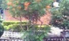 São Pedro das Tabocas - Uma das muitas espécies de plantas que  são encontradas nesta localidade.., Por July Mendes